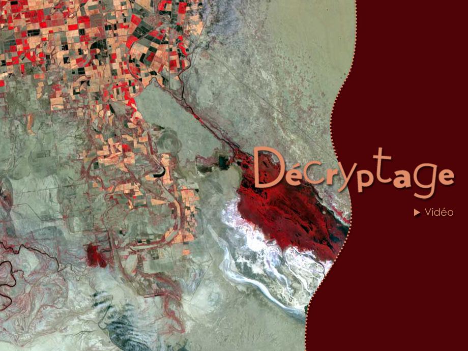decryptage_colorado_spot.jpg