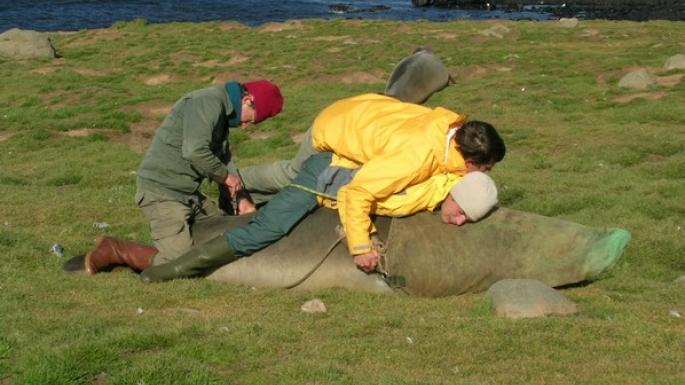 Le massage à la maladie limfostaze des membres inférieurs