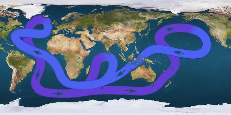 Circulation thermoaline : les grands courants océaniques © Luiz Fernandez Vargas