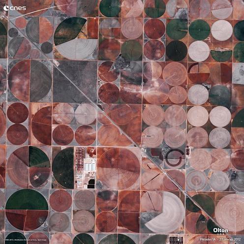 p11236_7bbce353fdea31bb1b16150cb7eeb21cPAGE1_3Agriculture_p.JPG