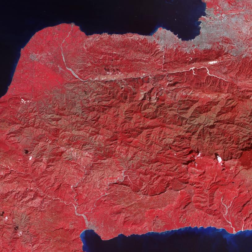 Image en fausses couleurs prises le 21 janvier 2010, 9 jours après le séisme. Les zones blanches signalent de possible glissements de terrain au milieu du couvert végétal (rouge). La capitale Port-au-Prince apparaît en gris, les rivières en ble...