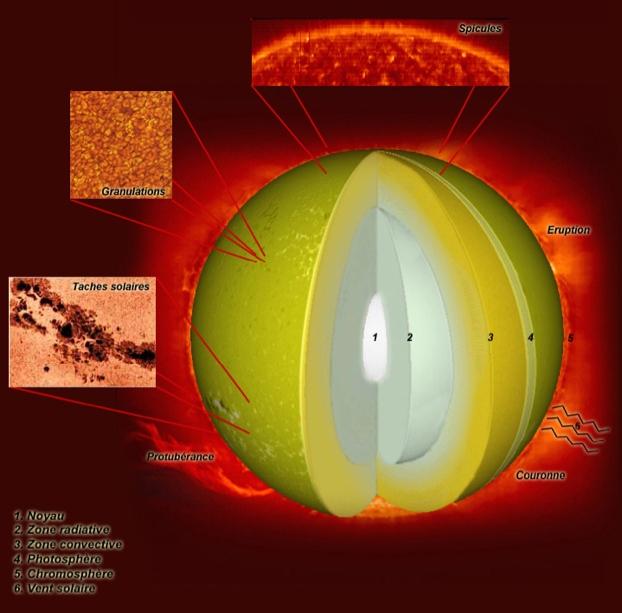 Schéma représentant les différentes parties du Soleil © P. Volvert/S. COX